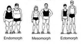 Exercise and Body Types
